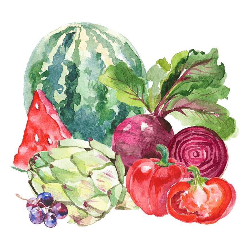 Watercolor illustration of a watermelon, artichoke, grapes, beets, and red peppers.