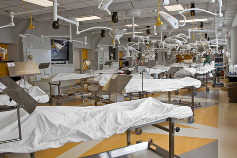 New Anatomy Learning Center Prepares Next Generation Of Clinicians