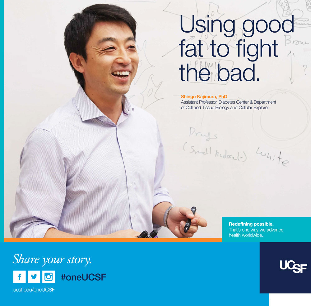 UCSF ad featuring researcher Shingo Kajimura. Text reads: Using good fat to fight the bad.