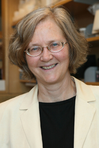 Elizabeth Blackburn, PhD