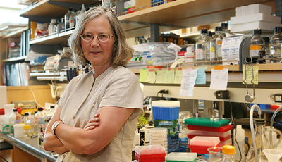 Elizabeth Blackburn in the lab.