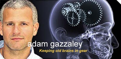 Photo of Adam Gazzaley