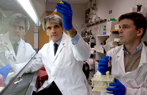 Stephen Hauser, MD, works with Pierre-Antoine Gourraud, PhD, in the lab