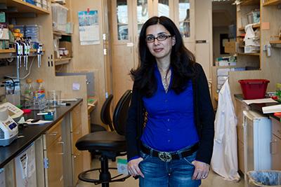 Hana El-Samad, PhD