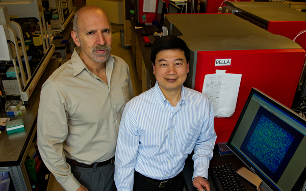 UCSF's Neil Risch and PuiYan Kwok
