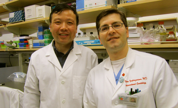 Jianqin Ye, MD, left, and Yerem Yeghiazarians, MD