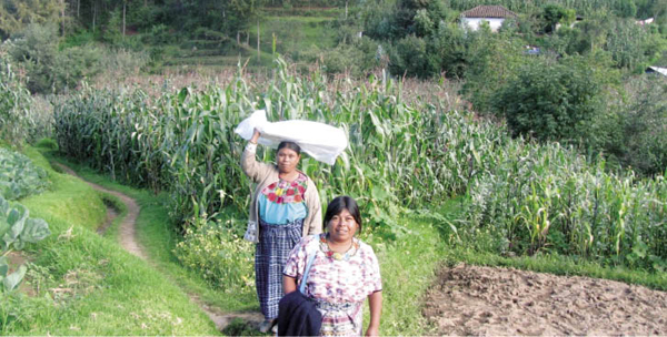 Two traditional birth attendants in the highlands of Guatemala