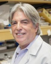 Jeff Bluestone is pictured in his UCSF lab