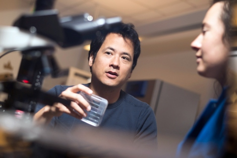 Saul Kato talks with Hannah Gemrich in his UCSF lab