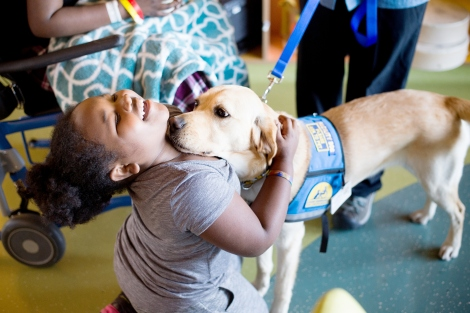Kimono, a 2-year-old golden retriever/lab spends time with 9-year-old Jamaira Lampkins