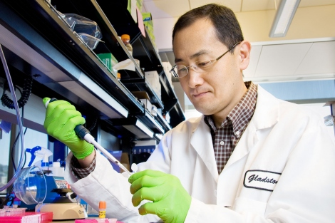 Shinya Yamanaka working in his Gladstone lab