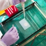 A researcher pipettes mouse DNA into agarose gel in a laboratory at UCSF's Parnassus campus