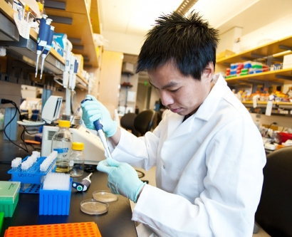 A graduate student works in the lab