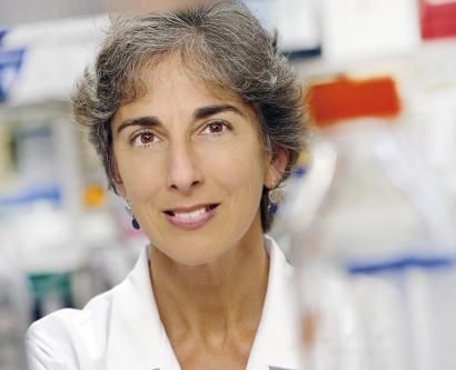 Jennifer Grandis in her lab