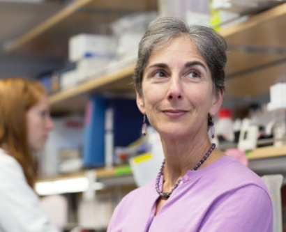 Jennifer Grandis in the lab