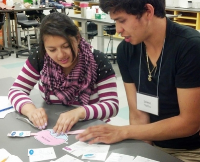 Gabby Flores, left, and fellow intern Jaime Velis engage in an activity to visualize  cellular processes during the HIP Orientation, where students learn basic lab skills  and concepts.
