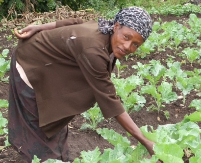 Kenyan farmer with irrigated crops