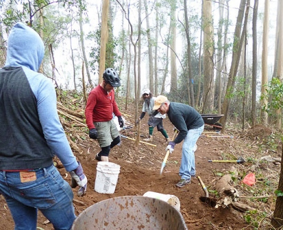 Volunteers working on a Mount Sutro trail