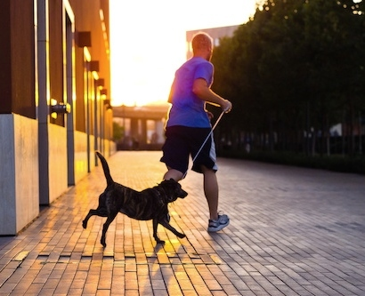 A man jogs with his dog at UCSF Mission Bay