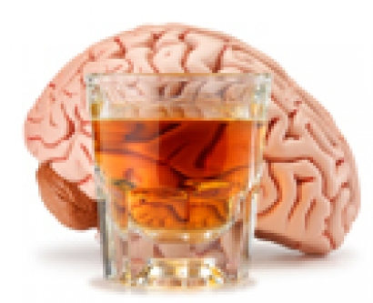 Stock image of alcohol and human brain