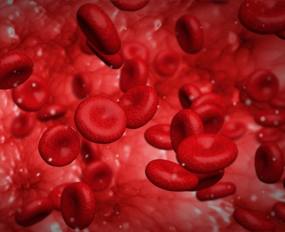 An illustration shows blood cells