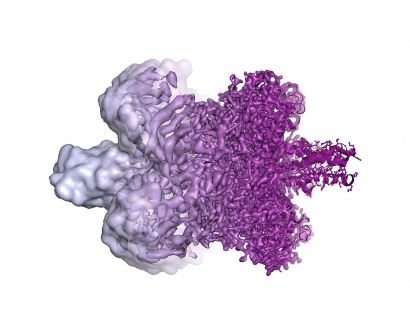 an illustration shows the differences in cryo-EM resolution between 2013 and now