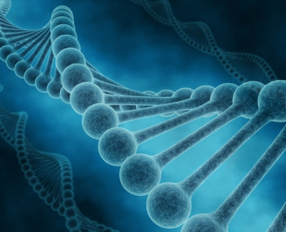Illustration of the DNA strand