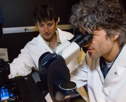 Robert Blelloch, MD, PhD, and Michael McManus, PhD, look through a microscope
