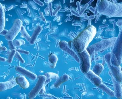 digital illustration of gut microbes