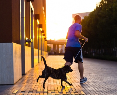 Sun shining on a man running with his dog
