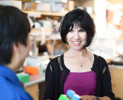 Kathy Giacomini in her lab