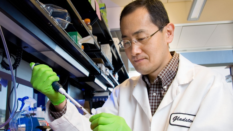 Shinya Yamanaka pipetting in his lab