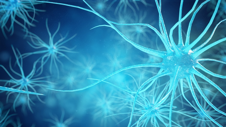 stock illustration of neurons