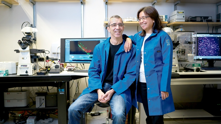 Portrait of Lani Wu and Steven Altschuler in their lab