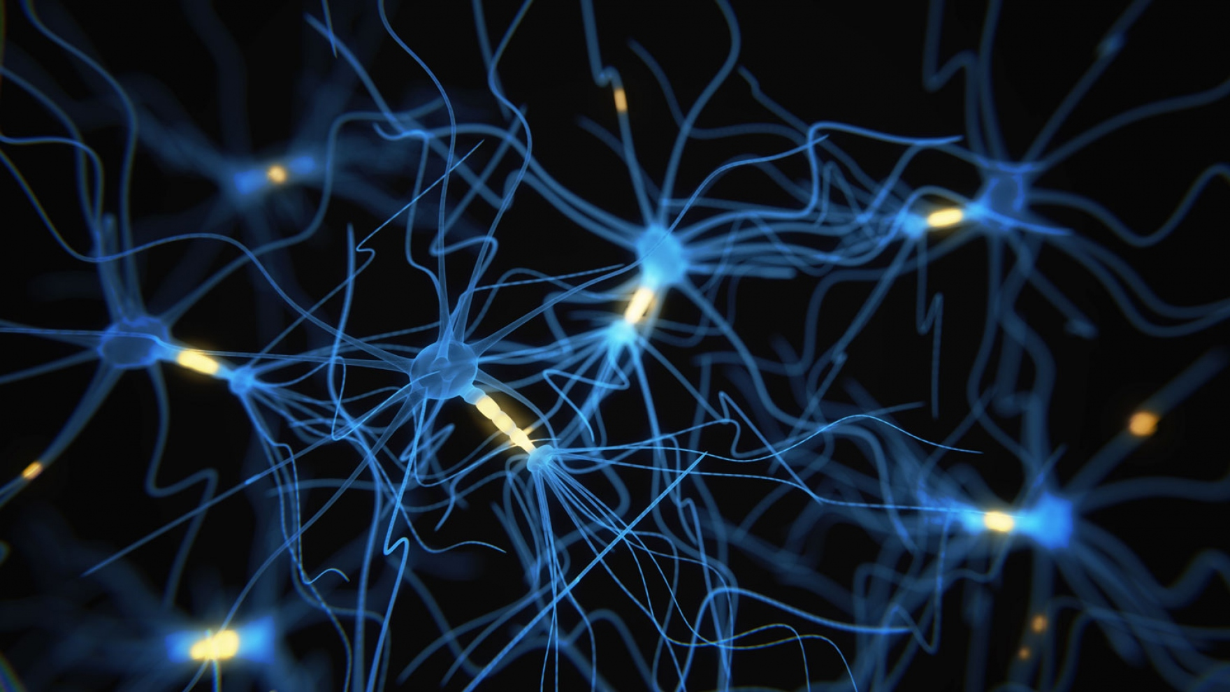 Cognitive Benefits of \'Young Blood\' Linked to Brain Protein in Mice ...