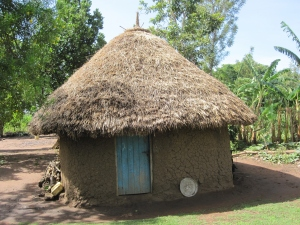 Photo of a typical patient home in Tororo, Uganda
