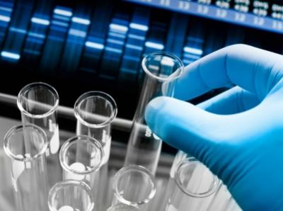 test unison research unico primo