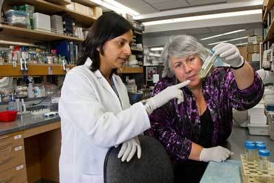 Somdutta Roy, PhD, and Thea Tlsty, PhD