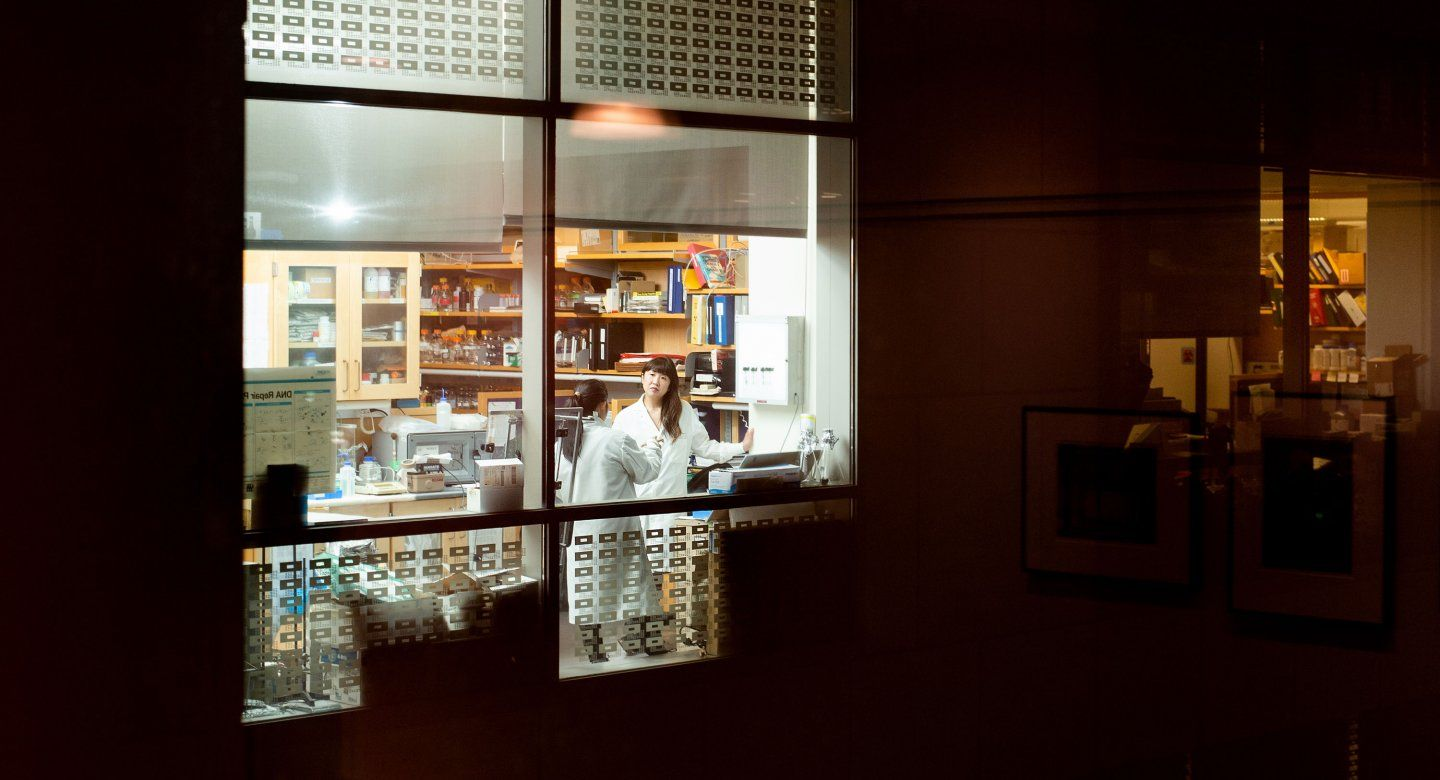 Researchers seen through window of lab