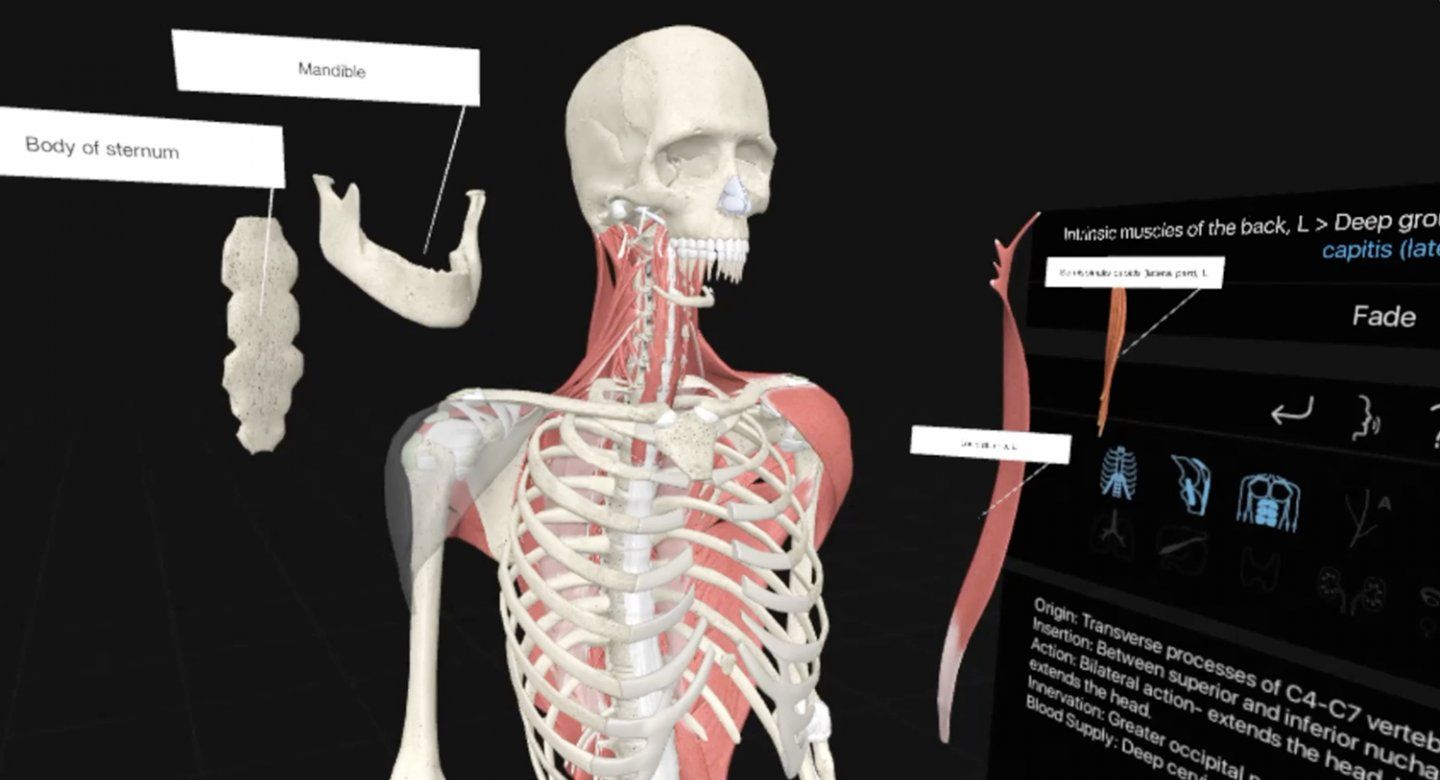 fcd54c18233 How VR is Revolutionizing the Way Future Doctors are Learning About Our  Bodies