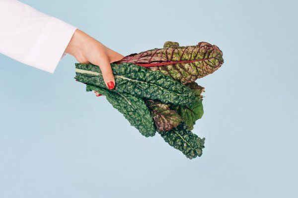 A hand holds out a bunch of swiss chard