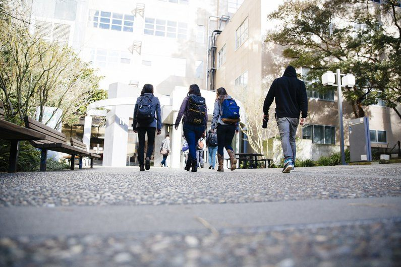 Students walking through the Parnassus campus