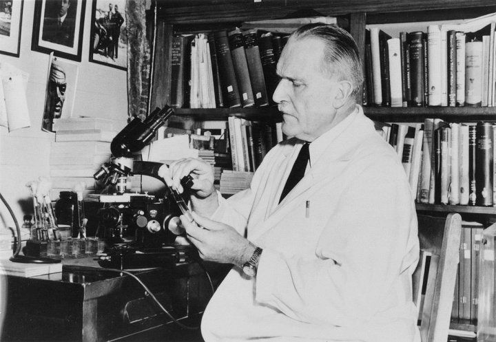 Karl Meyer working with microscope in 1920s