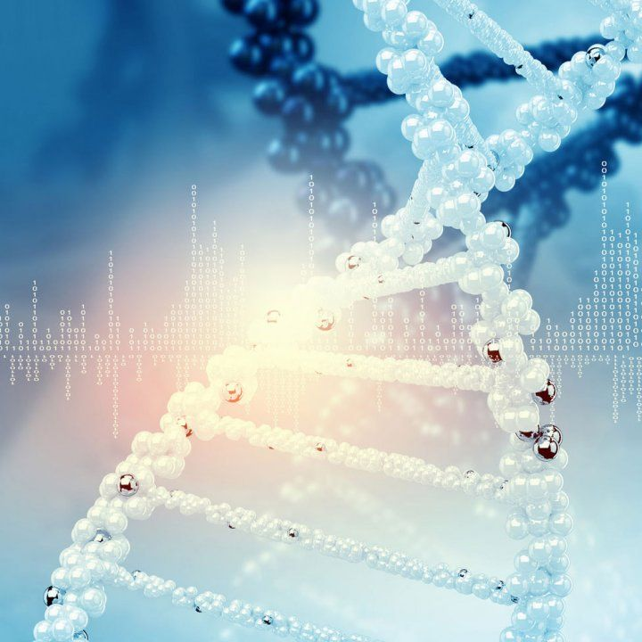 What is 12 Strand DNA Activation? – Complete …