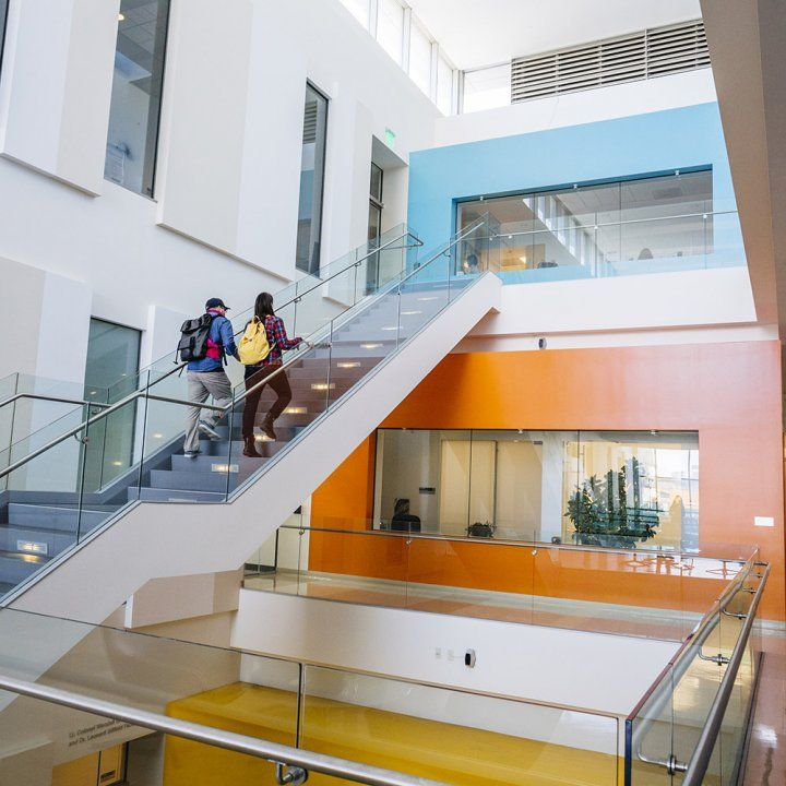 Two UCSFers walk up the colorful sunlit staircase in the Helen Diller Family Cancer Research Building