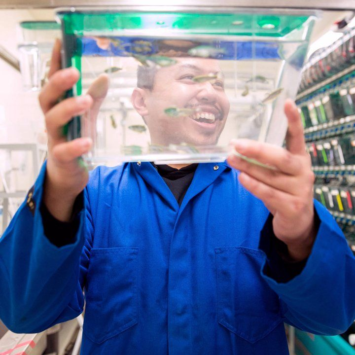 A laughing researcher in a blue lab coat holds up a small thin tank of zebrafish