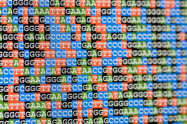 gene sequencing results