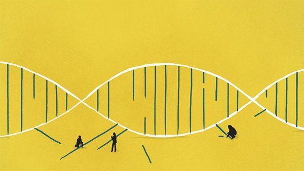 Illustration of small silhouettes of people taking apart and putting together a double helix.