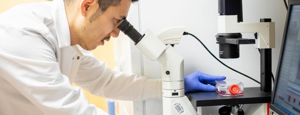 Fumitaka Inoue looks into a microscope