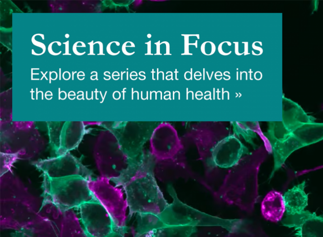 Explore Science in Focus, a series delving into the beauty of human health >